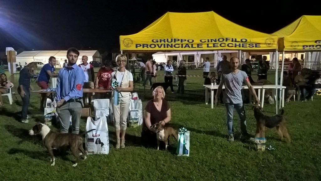 ROGOREDO BOB 2017 VAMPY