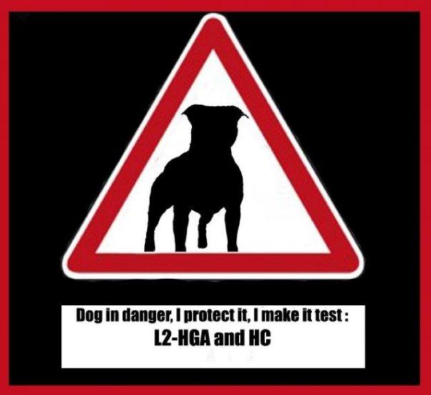 l2-logo-promozione-test-3